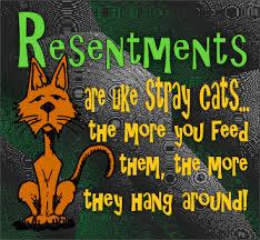 resentment cat